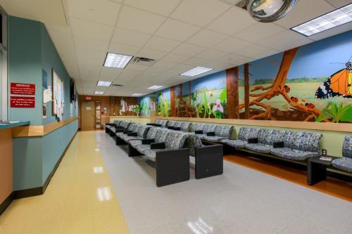 strictly pediatrics surgery specialists